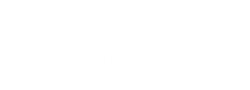 Fishbowl Solutions